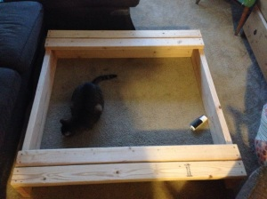 Help! I have half a sandbox for a coffee table